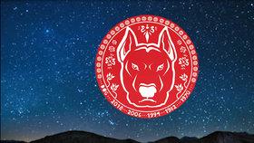 Nový čínský rok pro znamení Psa: Nenechte se odradit změnami a hlídejte si příležitosti