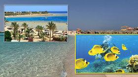 Egypt láká na průzračné moře, potápění i podmořskou krávu!