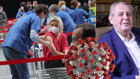 Koronavirus ONLINE: Vláda pravidla pro sport změní, naznačil Babiš. Zeman: Pandemie skončí v září