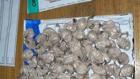 Člen Interpolu byl drogový boss. Zadrželi ho při pašování 300 kil kokainu