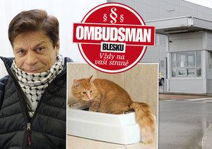 Bezpečnostní agentura přišla o pracovníka zajímavým způsobem: Práci mu vzal kočičí trus!
