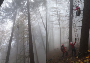 Paraglidistka skončila v korunách stromů. Dolů jí museli pomoci.