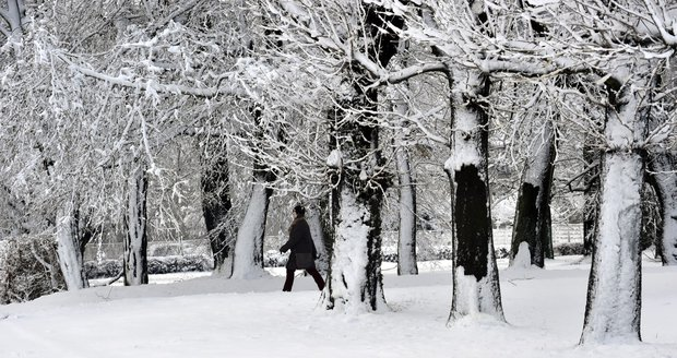 Zasněžený zámecký park v Holešově na Kroměřížsku