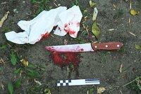 Policie vyšetřuje skupinu mladistvých kvůli vraždě dívky (†14): Jeden ji měl bodnout nožem do břicha!