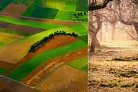 Ohromnými lány si ničíme přírodu, hospodařit ale jde líp: Experti prozradili jak