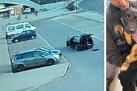 Fenku v Turnově vyhodil z auta a ujel: Natočila ho kamera! Zvíře skončilo v útulku