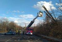 Vichr v Praze odhodil strom do silnice: Drnovská ulice byla během zásahu hasičů uzavřená