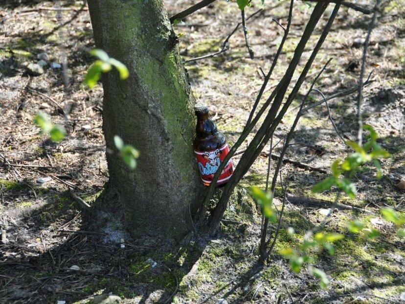 Hledání ukrytého piva. Velikonoční zábava v Německu.