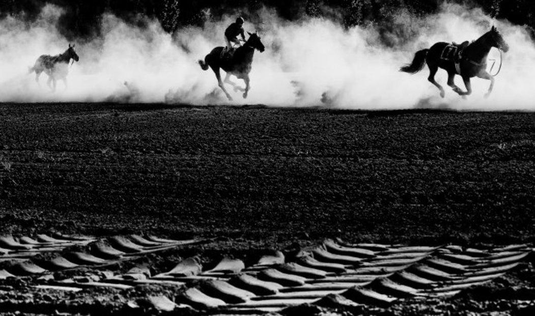Roman Vondrouš získal 1. místo v kategorii Sportovní akce v nejprestižnější světové fotografické soutěži World Press Photo 2013 za sérii snímků z Velké pardubické.