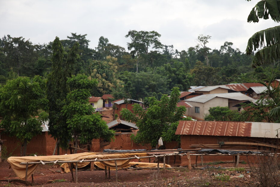 Velcí výrobci čokolády prý ožebračují chudé farmáře ze západní Afriky, tvrdí kritici.
