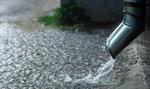 V Česku chybí voda. Dotace, jako je Dešťovka, problém nevyřeší