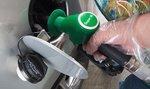 Benzin v Česku od minulého týdne zdražil, nafta nepatrně zlevnila