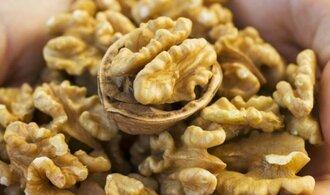 Vlašské ořechy jsou prý dobré pro zdraví spermií