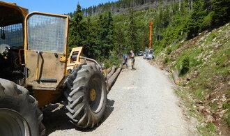 Antimonopolní úřad zakázal státním lesům uzavírat smlouvy s těžaři, prověřuje tendr