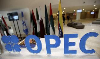 OPEC plní kvóty, Saúdská Arábie snižuje těžbu i za ostatní