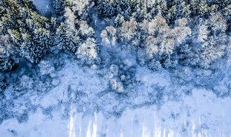 Hnutí Duha: Šumavským obcím se divočina vyplatí