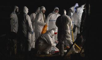Náplast pro farmáře postižené ptačí chřipkou: Stát má na odškodnění 31 miliónů