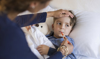 Úřady varují: V Česku řádí chřipková epidemie