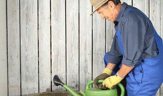 Voda nad zlato. Jak v létě ušetřit litry v koupelně i na zahradě?