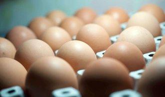 Vejce z Nizozemska a Belgie dál zůstávají ve skladech, na trh půjdou až po laboratorních testech