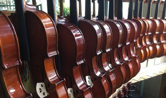 OBRAZEM: Jak se z fošny rodí mistrovské housle