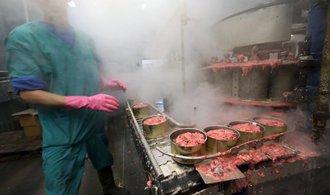 Sankce brzdí výrobu konzervovaného masa v Kaliningradu. Podívejte se do jedné z továren