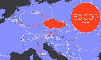 V Česku bují množírenské mafie, výdělky mohou dosahovat miliard
