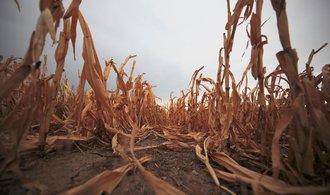 Sucho pustoší Evropu. Vlády házejí zemědělcům finanční lano
