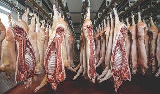 Týrání zvířat na jatkách ve Všeticích. Ministr Toman nařídí plošné kontroly