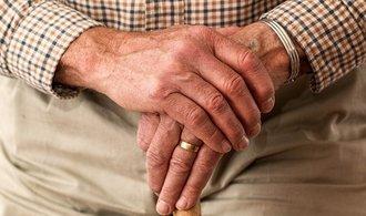 Zvýšení penzí podle návrhu ČSSD by rozpočet stálo kolem deseti miliard