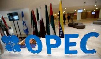 OPEC od ledna zvýší těžbu ropy o půl milionu barelů denně. Větší propad ceny se už nečeká