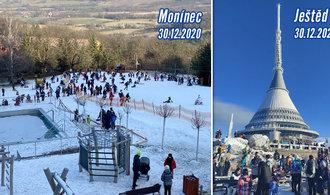 Glosa Petra Peška: Divočina na horách