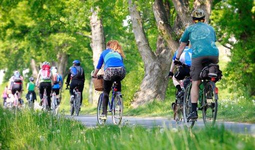 Cyklistická sezóna je tu: Pozor na povinnou výbavu, pojištění i alkohol