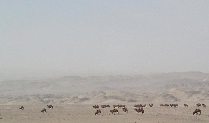 Část klimatické záhady odhalena, uhlík z ovzduší se ukládá ve vodě pod pouštěmi