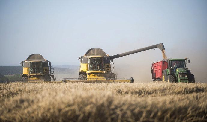 Česko vyváží tři miliony tun obilí. Bude to problém, varuje šéf agrární komory