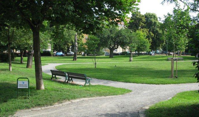 Hlavní město se zazelená. Pražský magistrát chce rozšířit lesy i parky