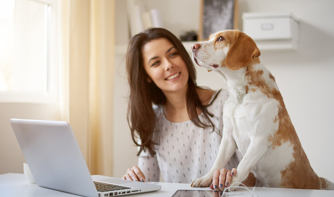 Přehled nejlepších aplikací a nástrojů pro úspěšný home office