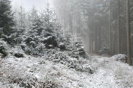 Předpověď počasí: V tohle už nikdo nedoufal! Čeká nás velká změna!