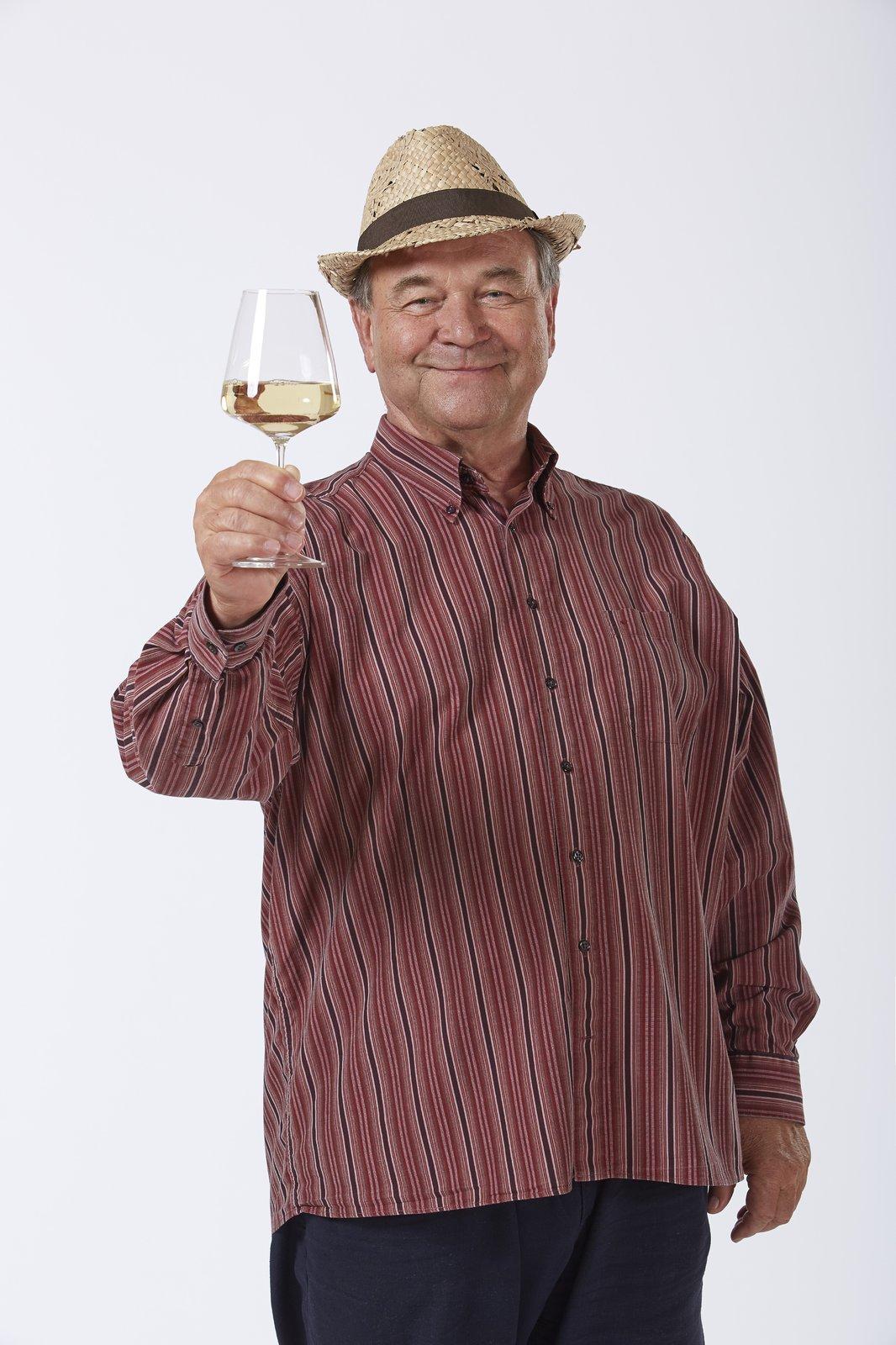 Jako vinař Pavlíček v seriálu Vinaři.