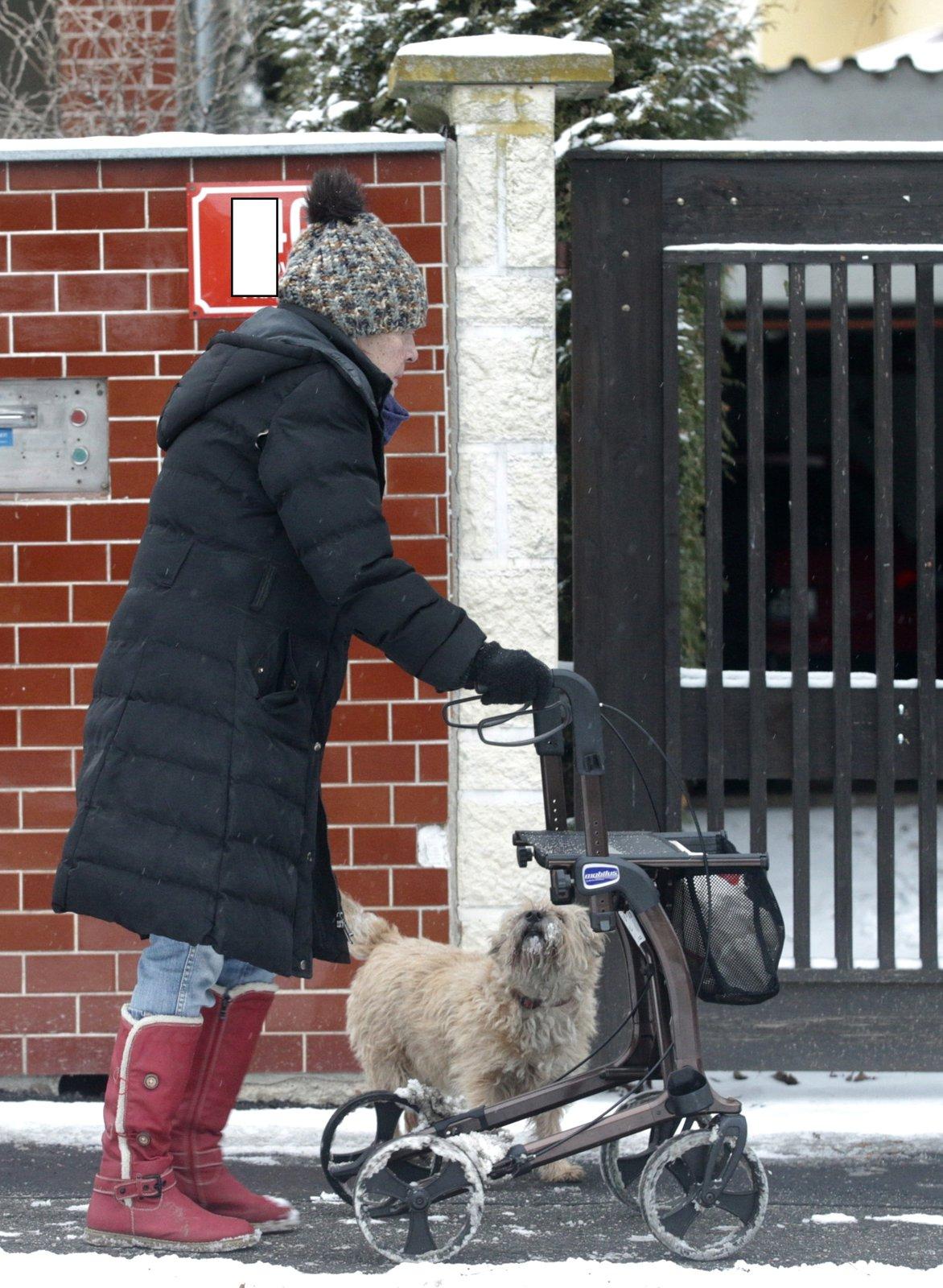 Začátkem února musela na procházku jedině s chodítkem.
