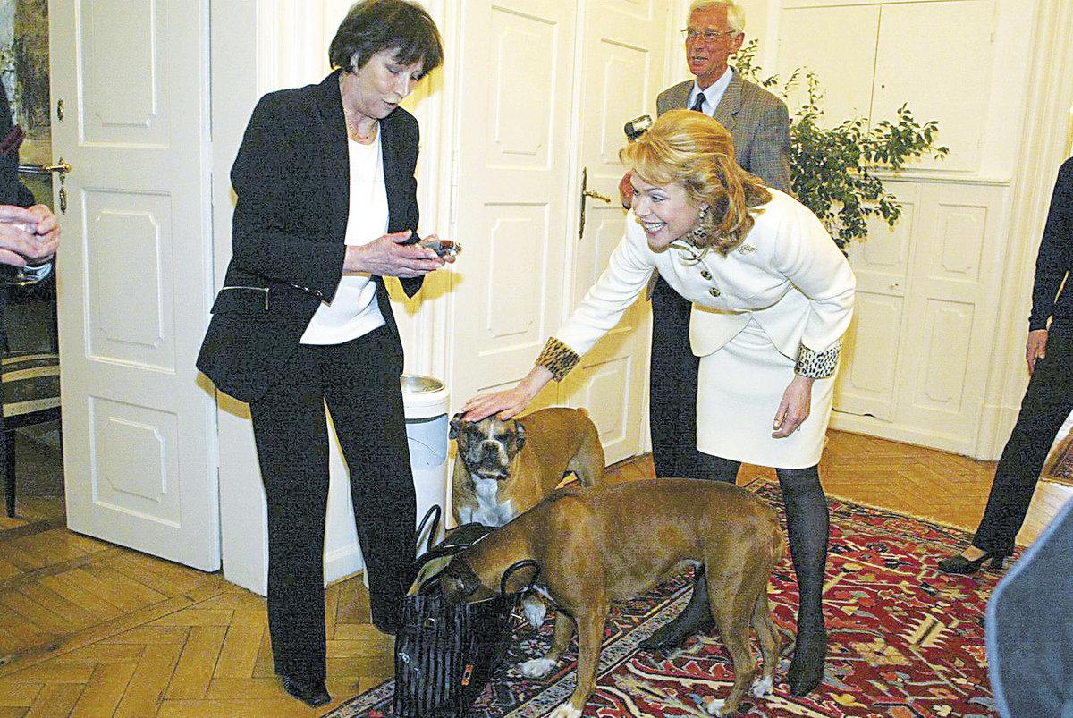 2002 S Dášou a jejími boxerkami.
