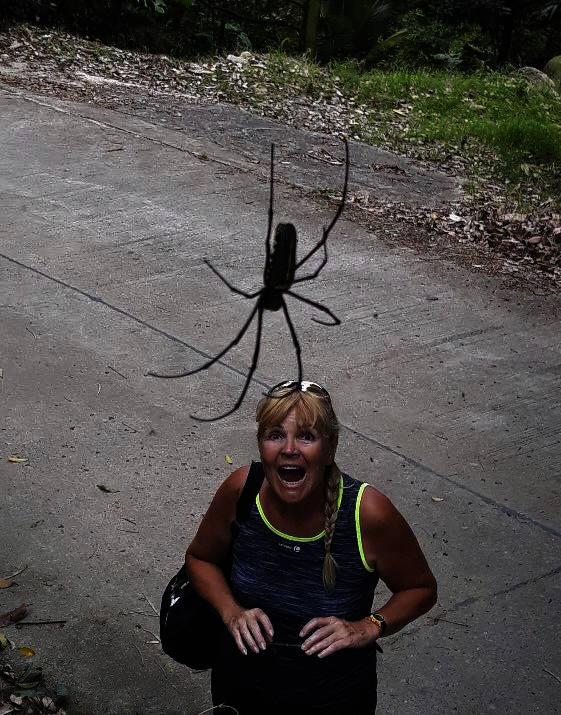 Z místních pavouků měla celkem respekt.
