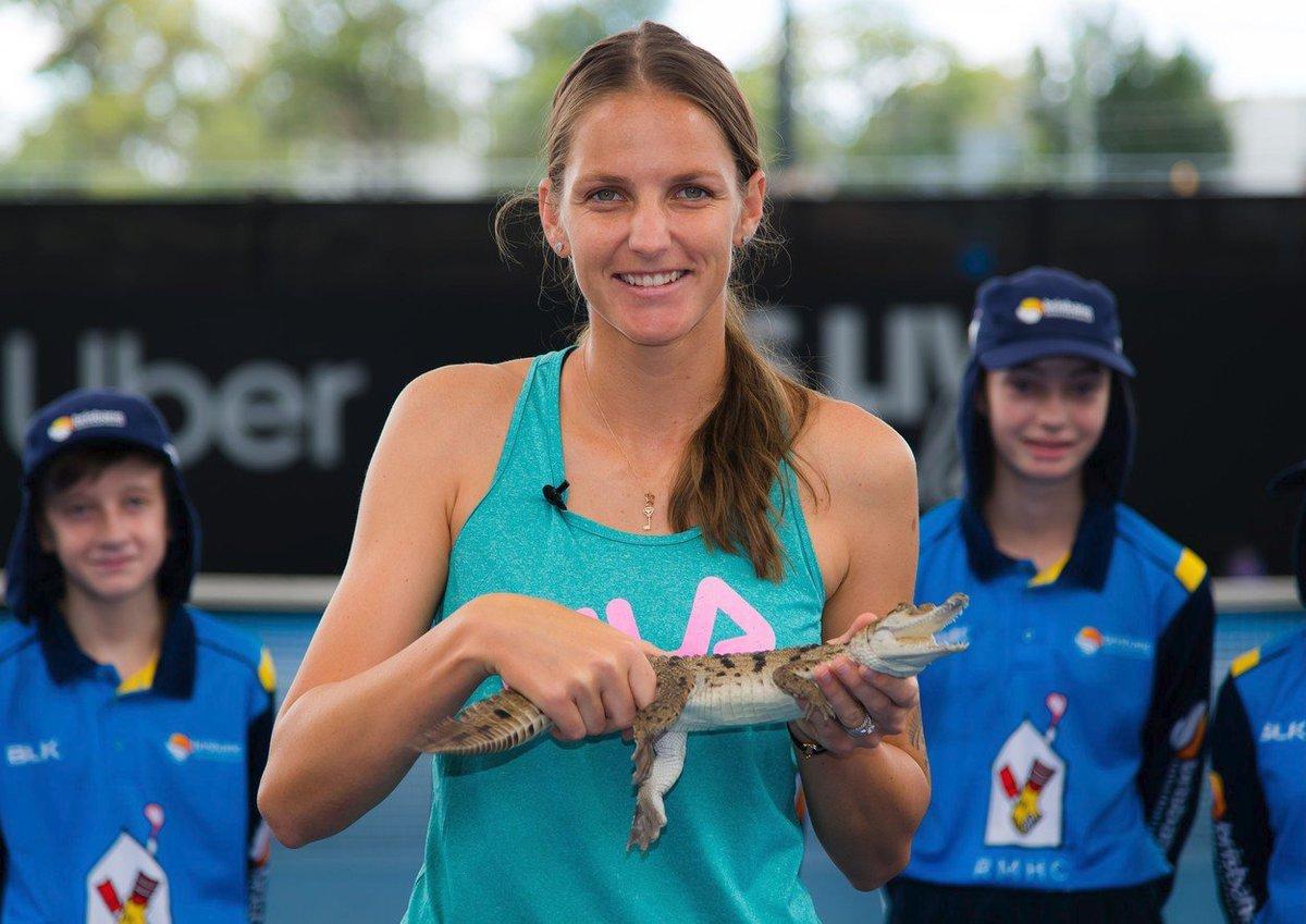 Karolína Plíšková s malým krokodýlem