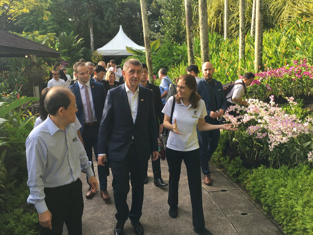 Po Andreji Babišovi pojmenovali v botanické zahradě v Singapuru orchidej (15.1.2019)