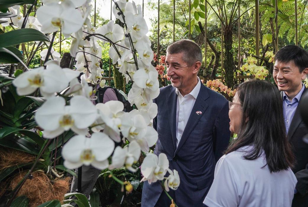Premiér Babiš v Singapuru: V botanické zahradě po něm pojmenovali orchidej