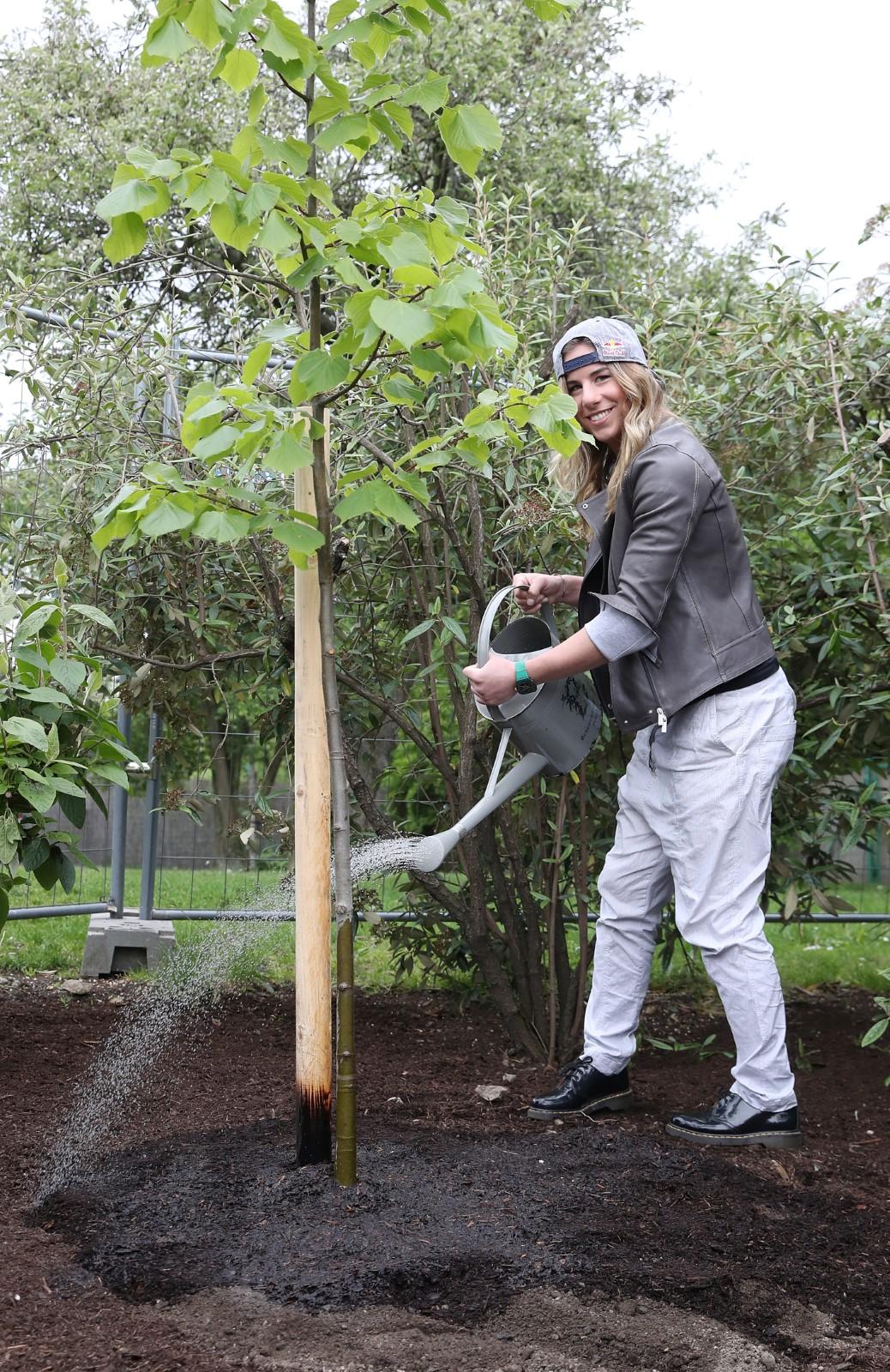 Ester Ledecká v pražské Botanické zahradě vysadila lípu velkolistou, potomka památného stromu z Nového Města na Moravě