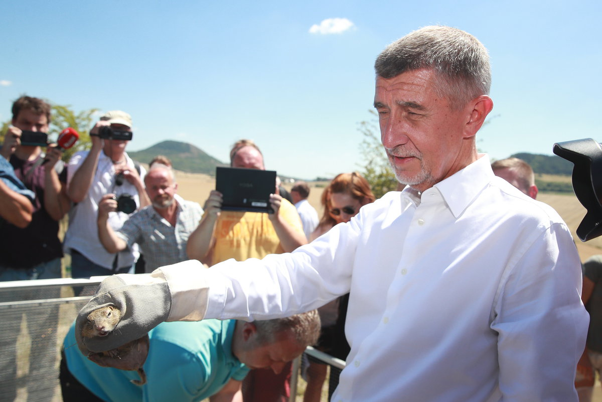 Andrej Babiš vypouštěl na Lounsku ohrožený druh syslů