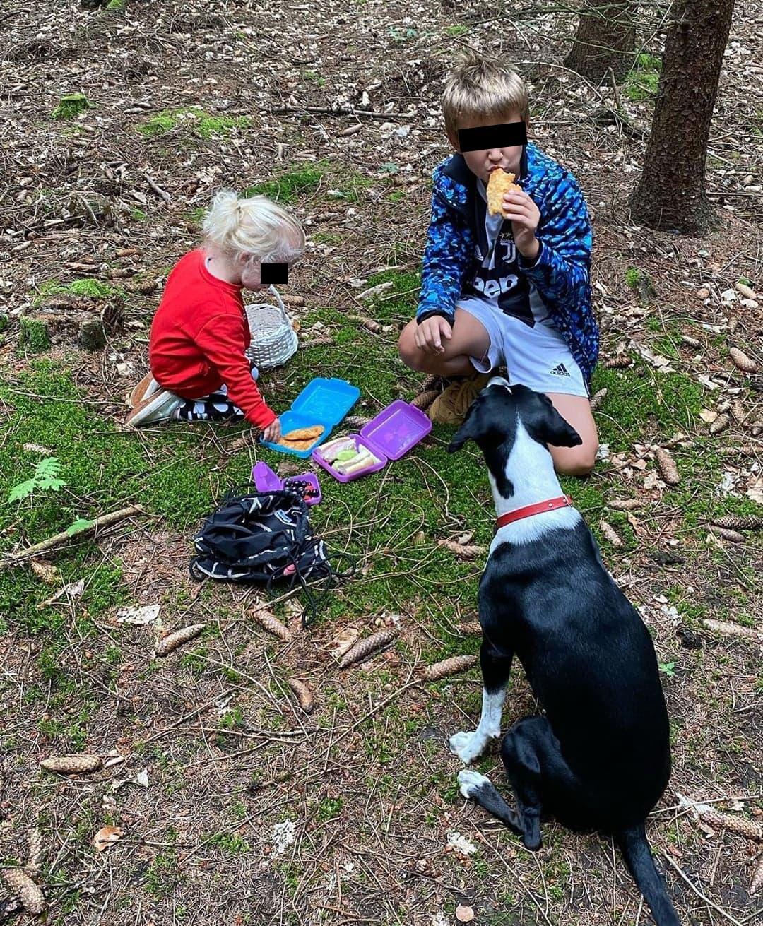 Agáta Hanychová vyrazila s dětmi a psem na houby.