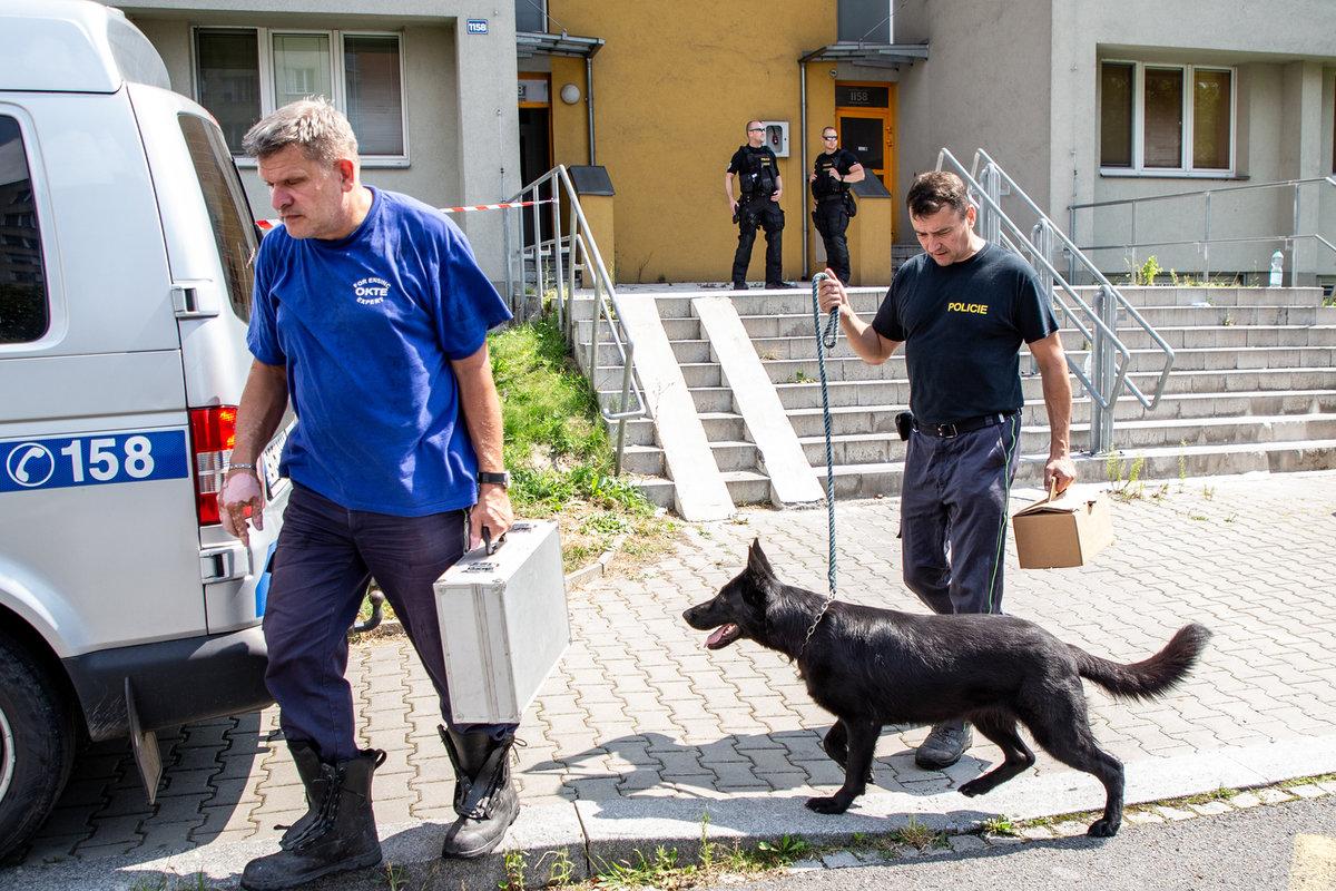 Policejní technici se psem prohledávali místo neštěstí.