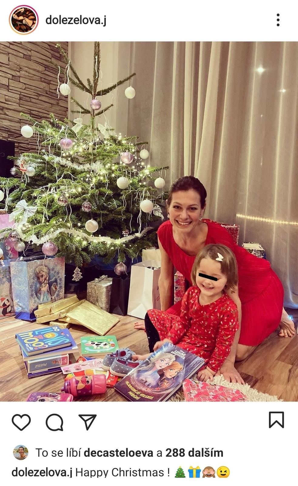 Vánoce u Jany Doleželové